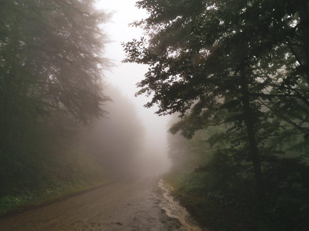 Ostatnie kilka kilometrów pokonywaliśmy we mgle