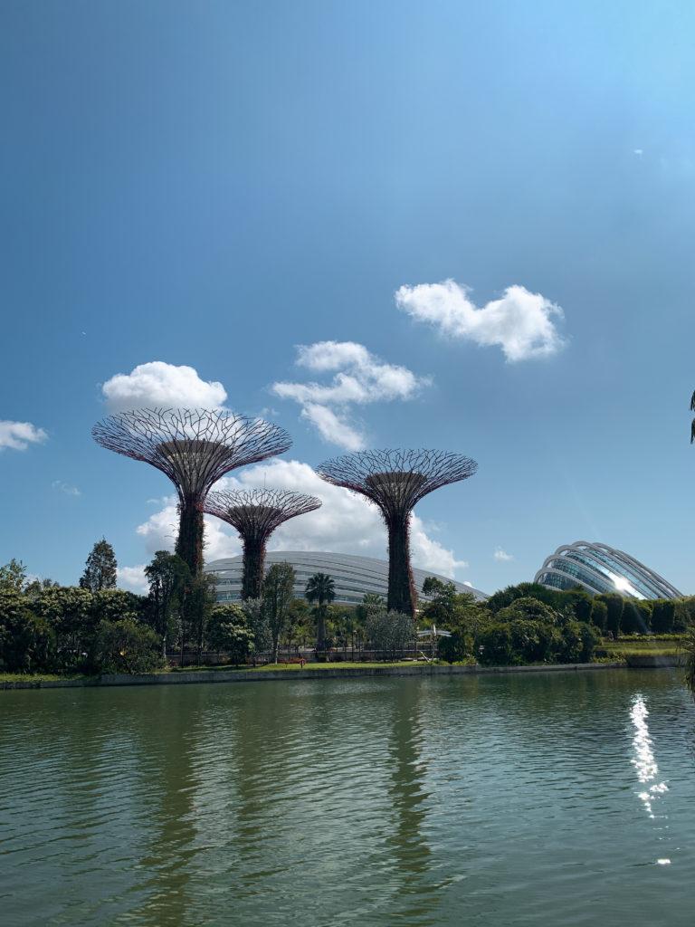 Gardens by the Bay - co zobaczyć w Singapurze