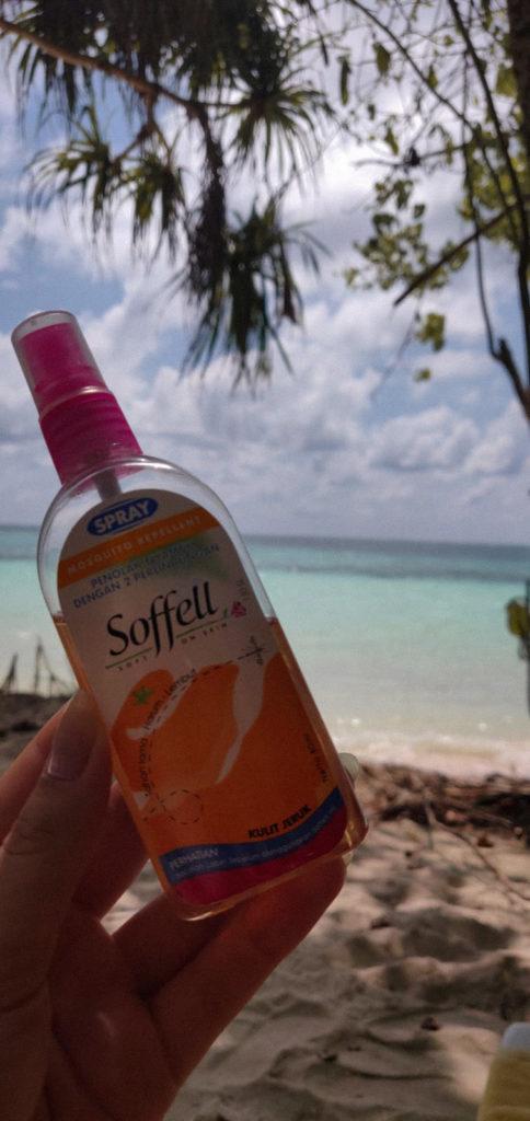 Komary - co warto wiedzieć o Malediwach
