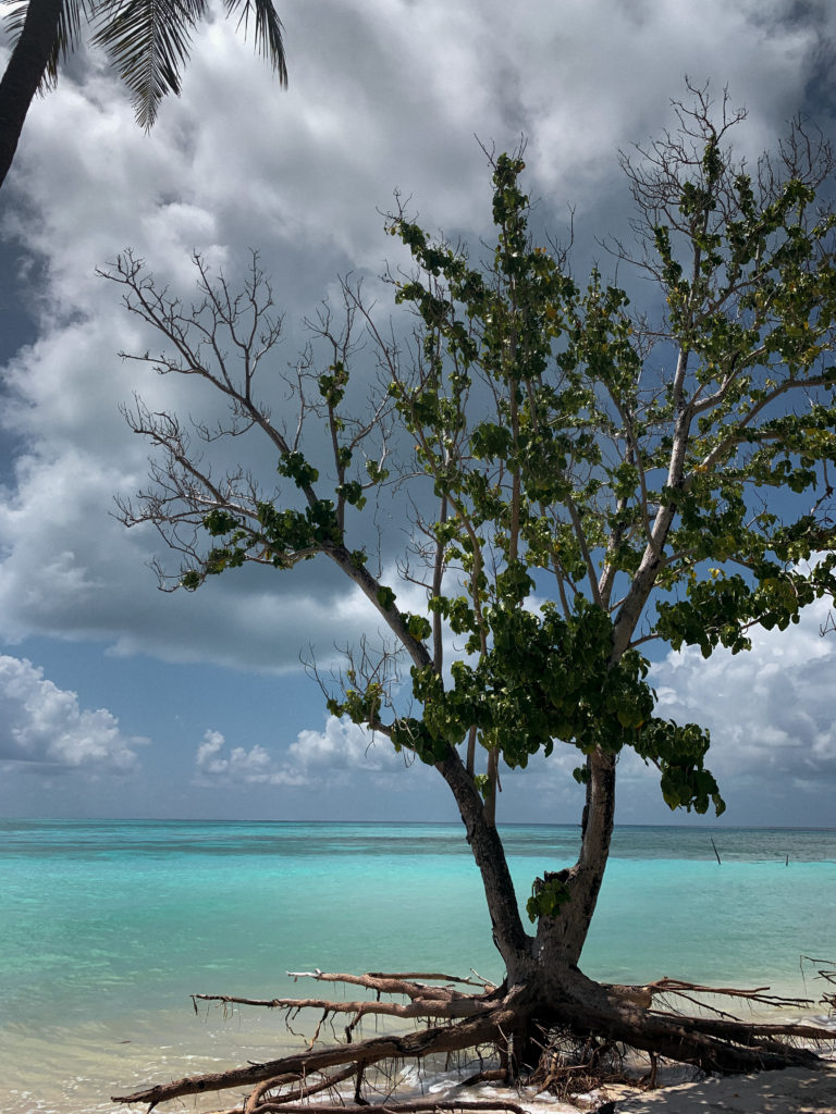 Bikini beach na wyspie Goidhoo